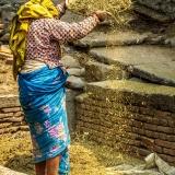 Nepal - Woman working