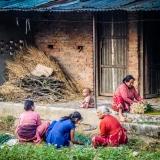 Nepal - Women farmer