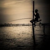 Sri Lanka - Fisherman on stilts