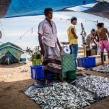 Sri Lanka - Galle - Fish market 2