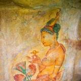 Sri Lanka - The Sigiriya Ladies 2